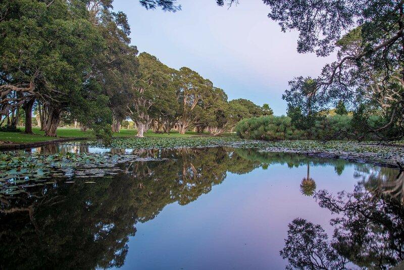 centennial-park-sydney-places-to-live-digital-nomads