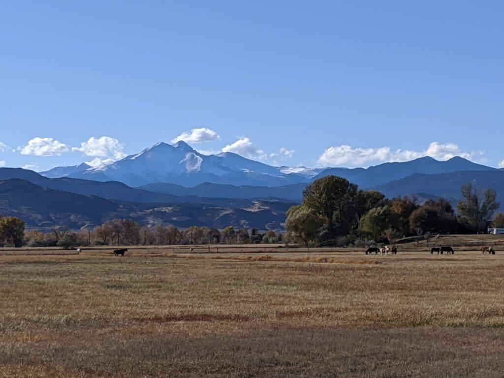 Longmont-Twin-Peaks-by-Maison-Dixon-Productions