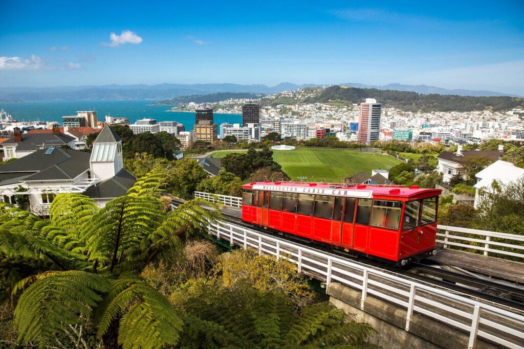 Wellington for Digital Nomads